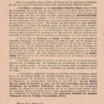 Die Kirche, die Frauen und die Politik im Wahlkampf 1919